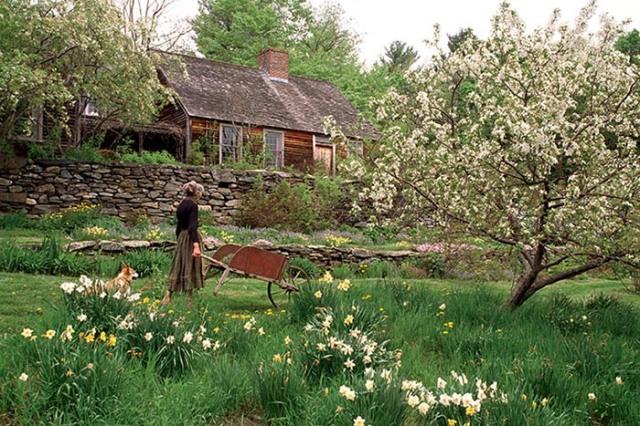 Tasha_garden